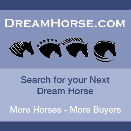 www.dreamhorse.com