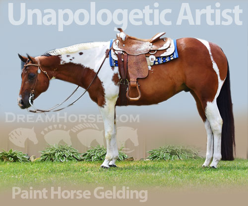 Horse ID: 2180955 Unapologetic Artist