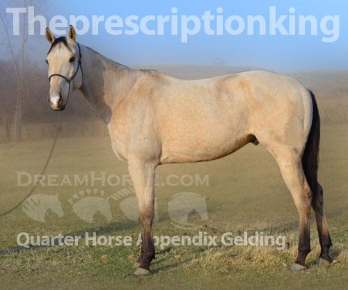 Horse ID: 2186292 Theprescriptionking