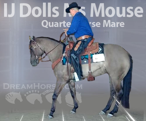 Horse ID: 2190134 IJ Dolls Ms Mouse