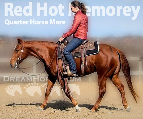 Horse ID: 2192144 Red Hot Memorey